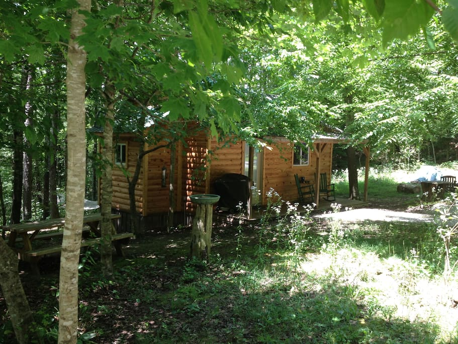 Looking at the cabin side yard, picnic table & hammock