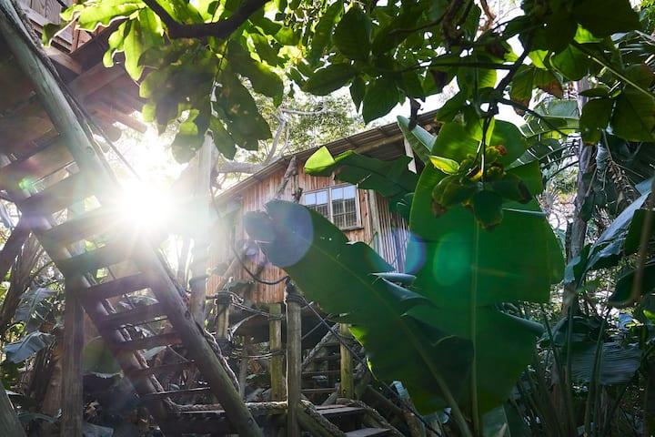 Mantis & Moon Backpackers Lodge - Treehouse A