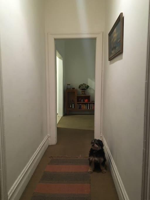 This is the entrance hall. Bedrooms are off to each side. (Dog will not be at the residence during your stay.)