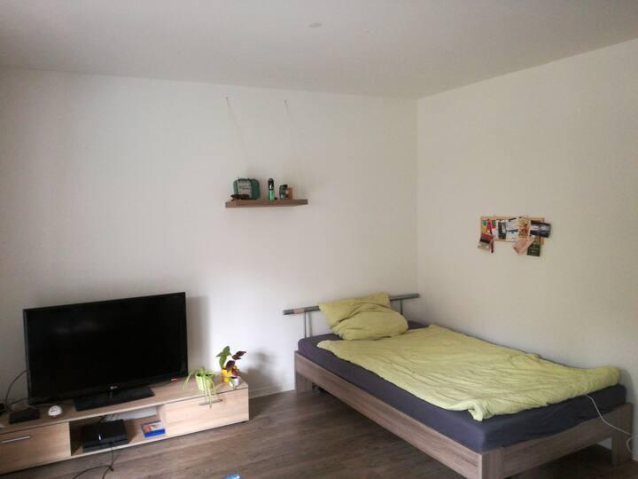 Modernes 1-Raum-Apartment mit Balkon in Dresden