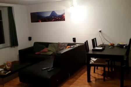 Helle, moderne 4-Zimmer Wohnung - Glarus - Flat