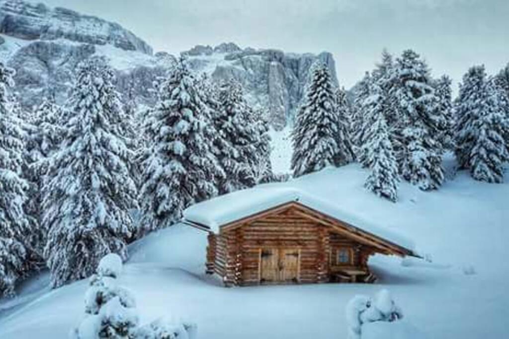 Seiser Alm/ Alpe di Siusi