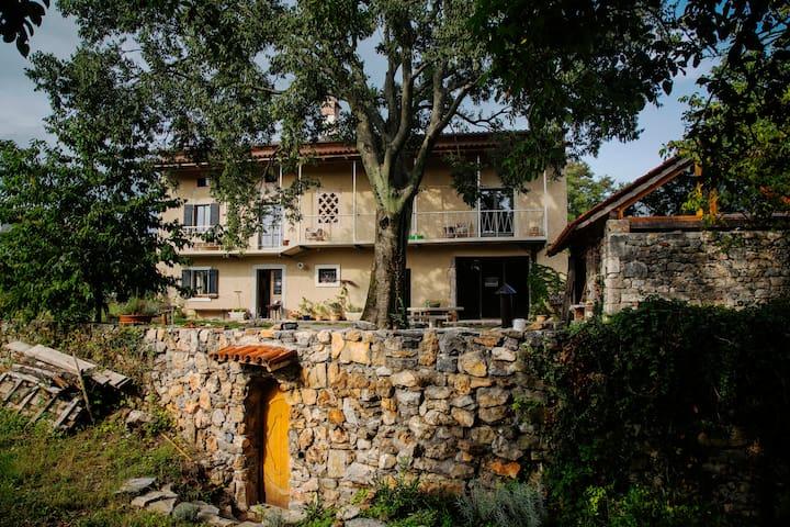 Sunny Grove -  a house in Kras