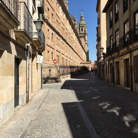 Precioso apartamento en calle del siglo XI - Salamanca - Appartement