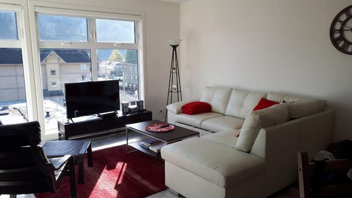 Squamish downtown - NEW modern 2 bedroom condo