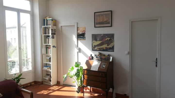 Appartement lumineux quartier de la Plaine