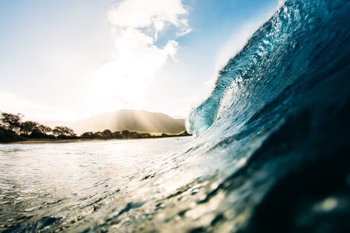 Explore the surf