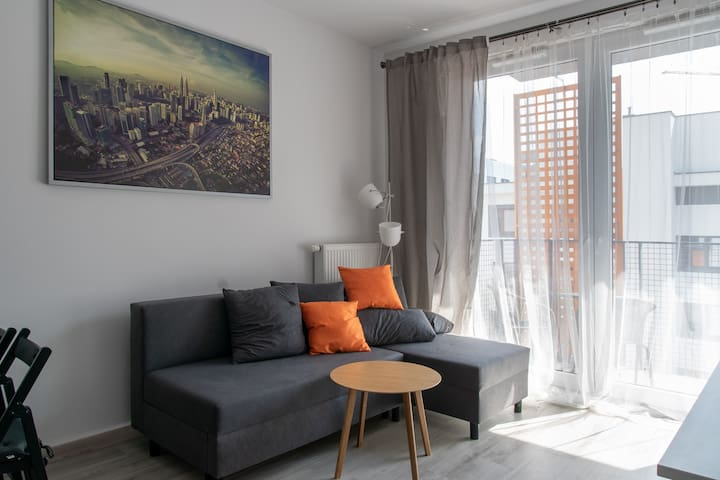 Charles Apartment near Airport and Business center