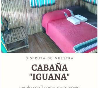 """CABAÑA RUSTICA """"IGUANA"""" - CASA BAMBUTÁN Palenque"""