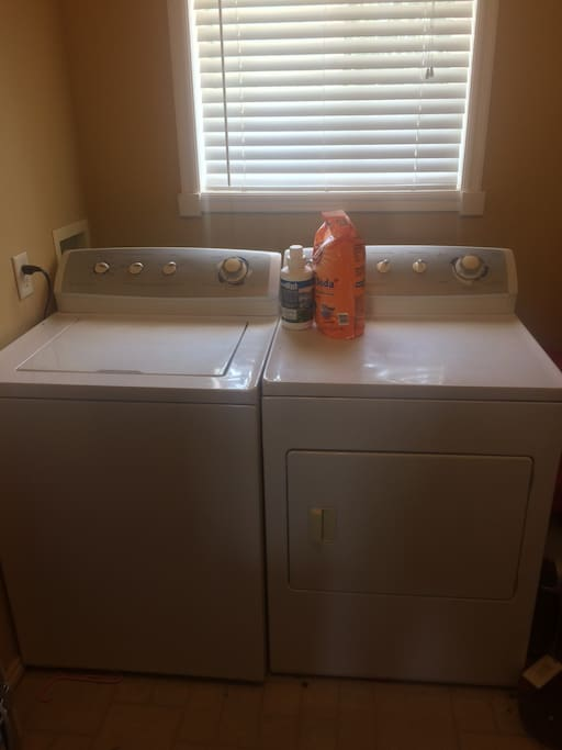 Laundry room with washer and dryer, and detergents to use.
