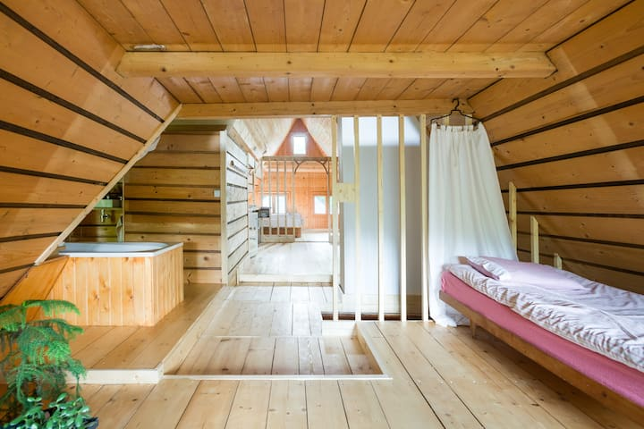 Attic in the Family House