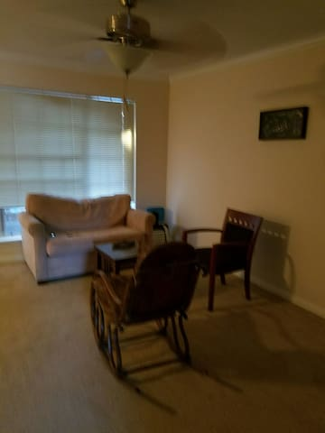 Cozy 1 bed with parking - Houston - Apartamento