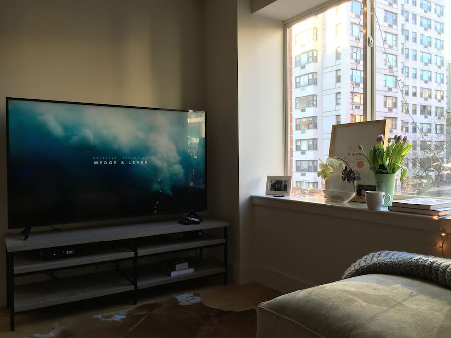 """65"""" 4K TV"""