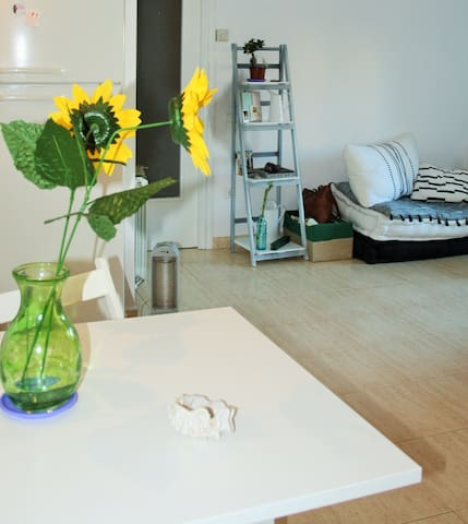 Apartamento Ca La Lupe (centro Roda)