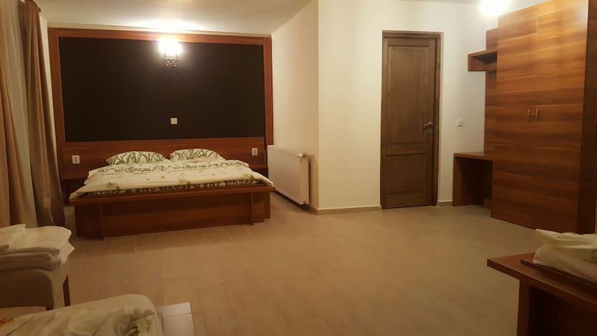 Cozy Villa  in Transylvania - Negreni
