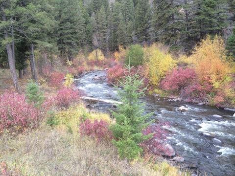 Scenic Boulder Creek Waterfront Campsite #2