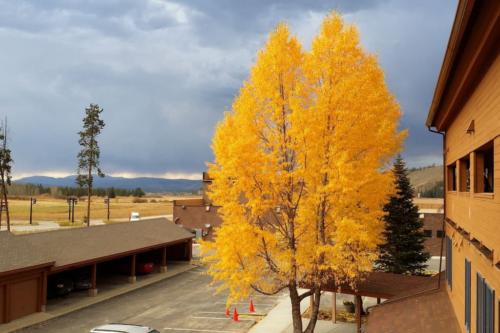 View of Cozen's Meadow/Grand Park in Fall from front door. Disk golf courses, trails and summer rain in the distance.