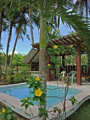 Webb brothers Homestay1 drop down price book now!!