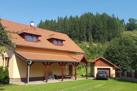 Villa Slovakia with sauna and fruit-garden