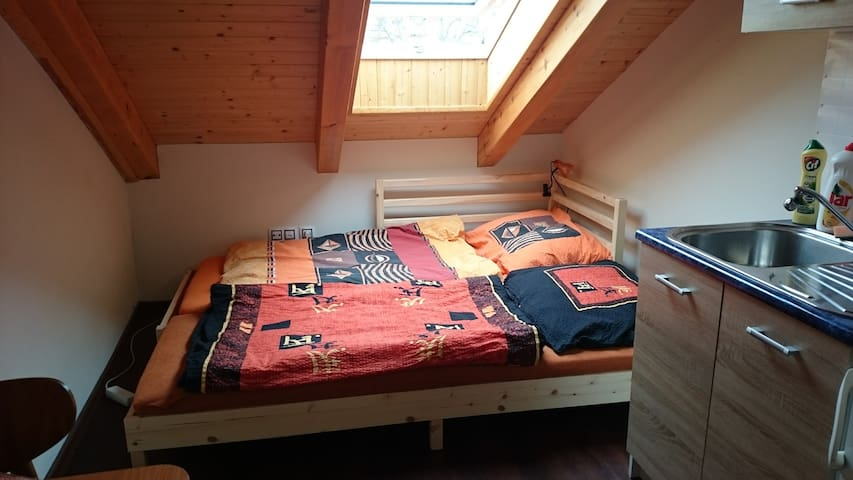 Homely attic room with kitchennete - Brno - Casa
