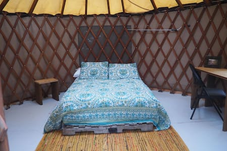The Infinity Yurt - Vida - Jurta