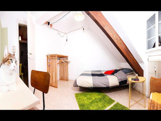 Chambre confortable à quelques pas du centre ville - Štrasburk - Byt