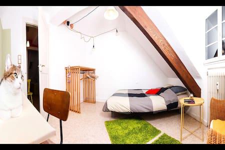 Chambre confortable à quelques pas du centre ville - Strasburgo - Appartamento