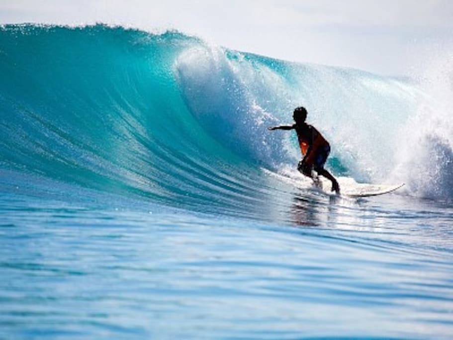 Waikiki (Summer Time Thrills)