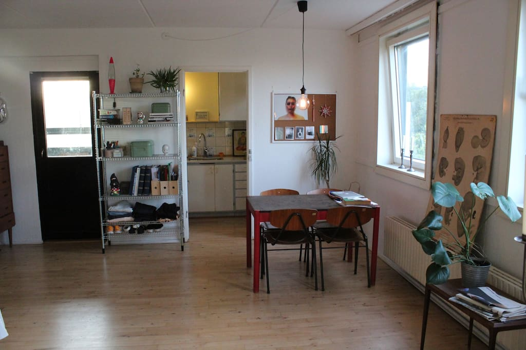 Big and spacious living room with separate kitchen and bathroom