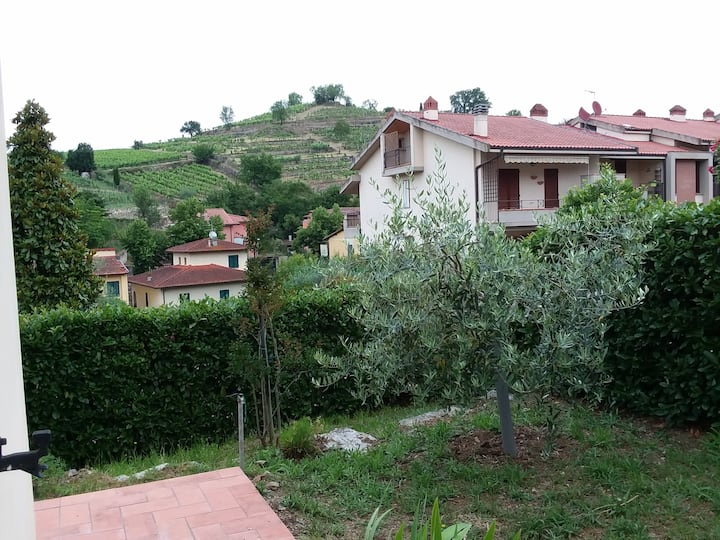 Cozy Apartment with Garden in Greve in Chianti