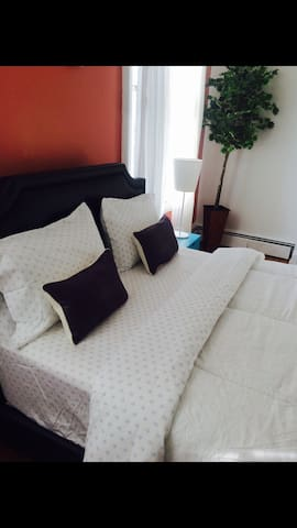 Clean and cozy one bedroom apt in OTR/UC