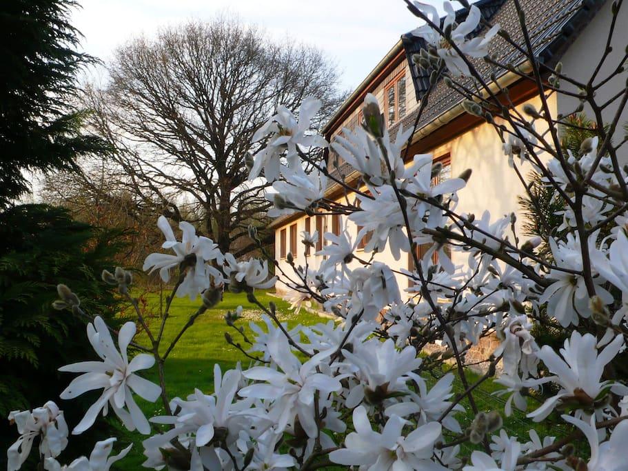 Außenansicht Frühling