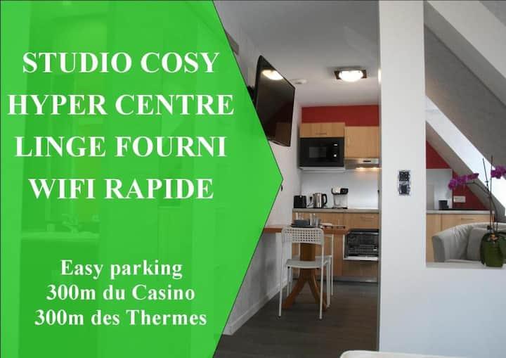 La Potinière du Lac Appartements - Studio de 26 m² totalement équipé.
