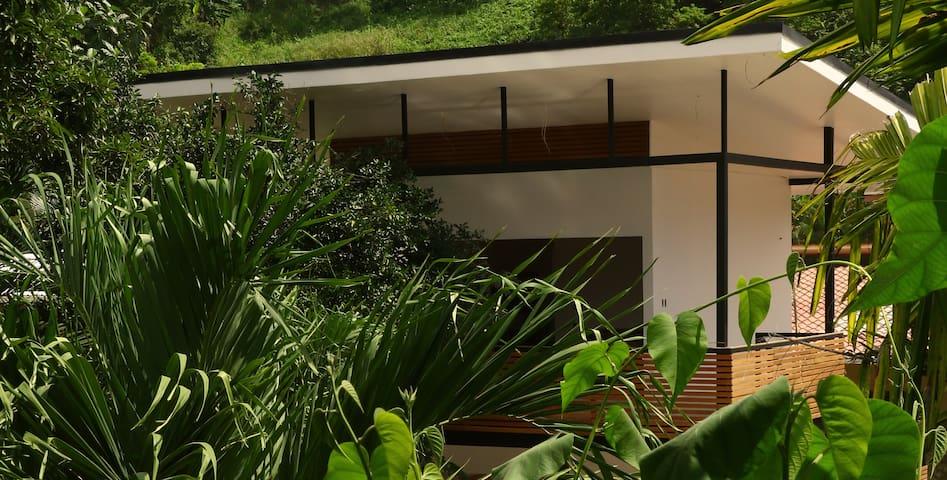 Villa Cacao Suite Santa Teresa   Garden view with pool