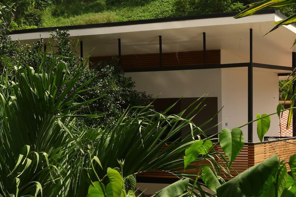 Villa Cacao Suite Santa Teresa | Garden view with pool