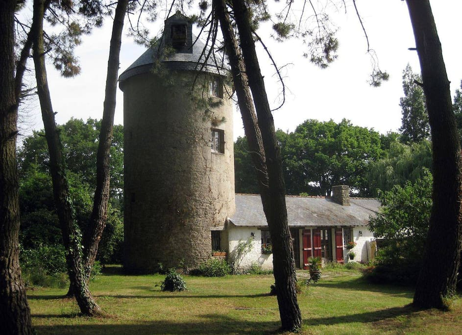 Vue du Moulin coté bois le Studio privatisé est Attenant au Moulin et non dans le moulin.