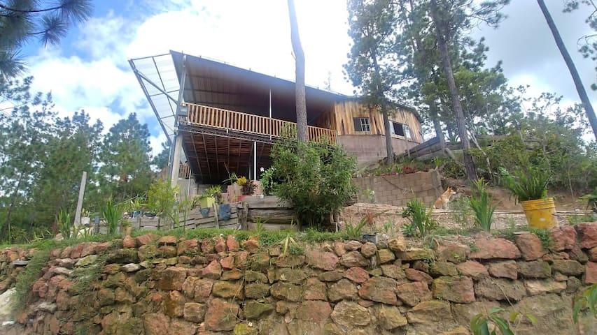 Los Pinos Cabañas y Camping (Ecoturismo)