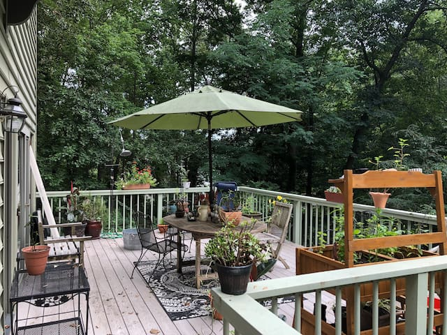 Wooded paradise in NE Baltimore County