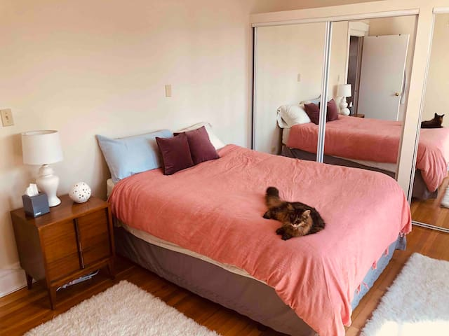 Queen bed with organic cotton sheets and natural latex foam hybrid mattress. Kitty won't be there when you are :)