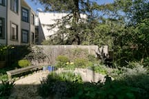 View of garden shared by all residents of the building