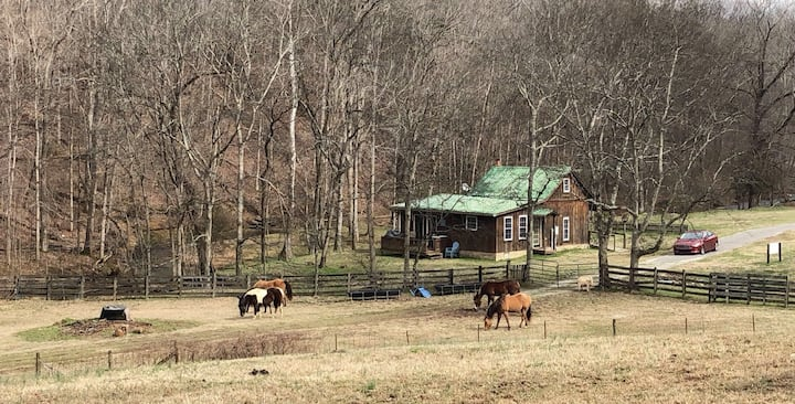 Nashville Area Country Cabin/Coyote Creek