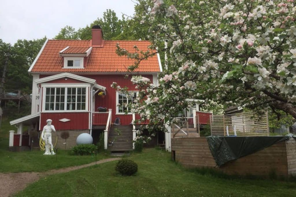 The house with blooming Apple Trees.