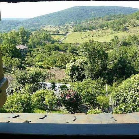 Vistas al Parque Natural desde la habitación