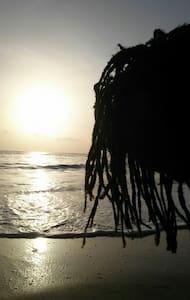 The Beach House - Love - Port Antonio, Portland Parish, JM - Penzion (B&B)