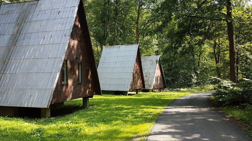 Chaty na samotě v lese Barborka 1