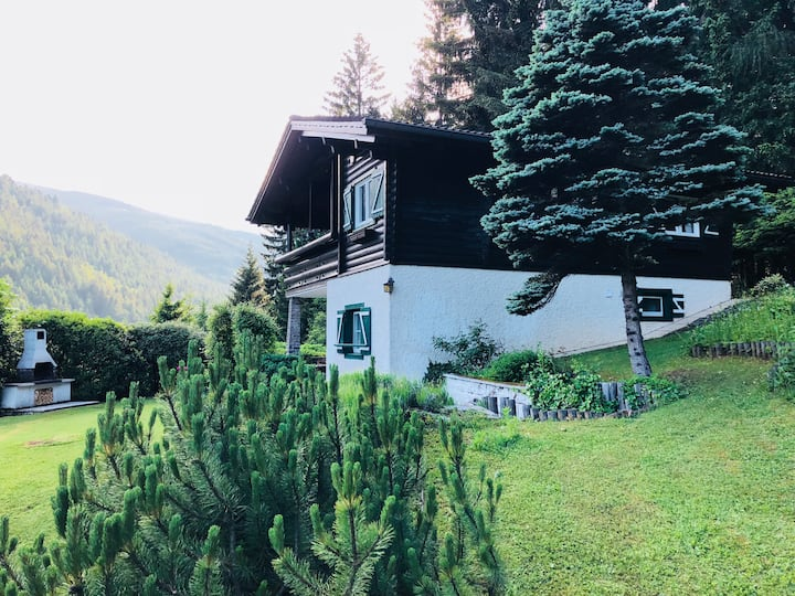 Entire chalet in the mountains close to Vienna