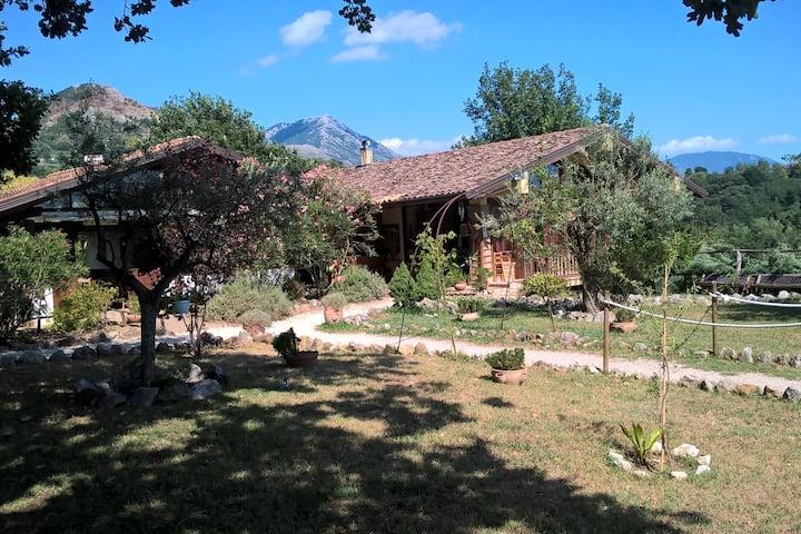 Azienda Agro-Turistica Crete Gialle Stanza Lunga