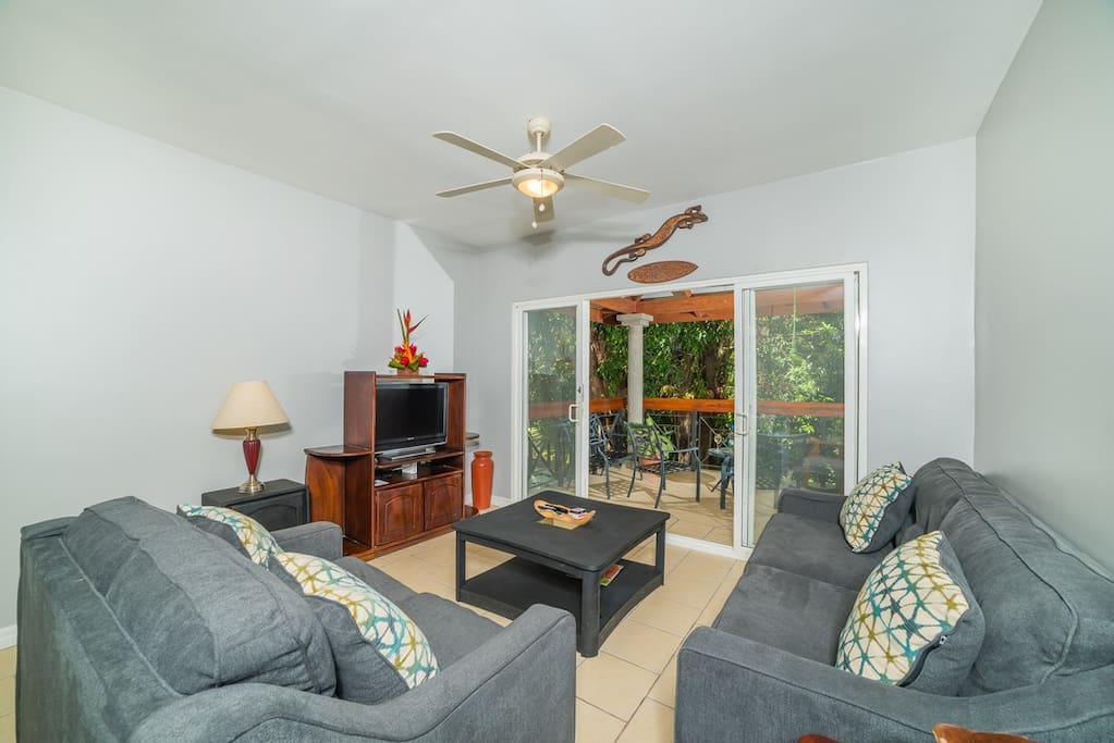 Spacious living room to sit, read, work, share, watch TV and more!