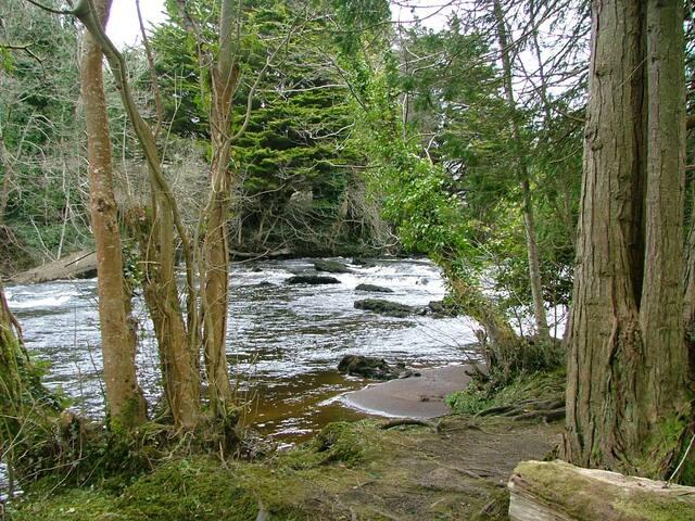 River Bonnet