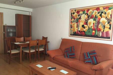 Zona prepirenaica, dos habitaciones - Sabiñánigo - Pis